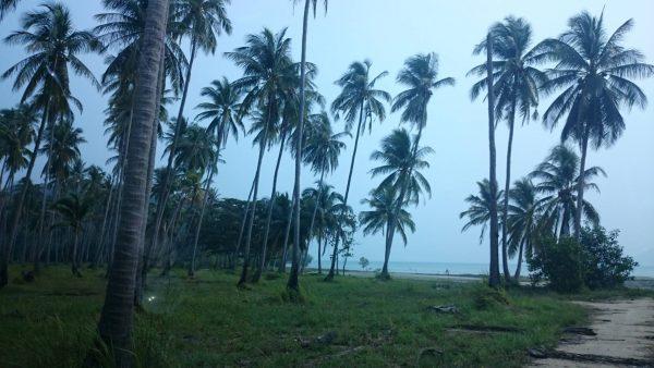 ขายที่ดินติดหาดท้องกรูท เกาะสมุย