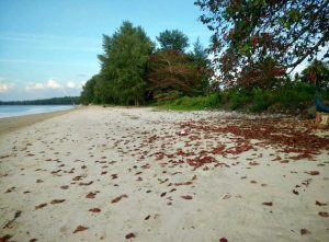 ขายที่ดินติดหาดสวยที่สุด 6 ไร่ เกาะลันตา เพื่อทำรีสอร์ท